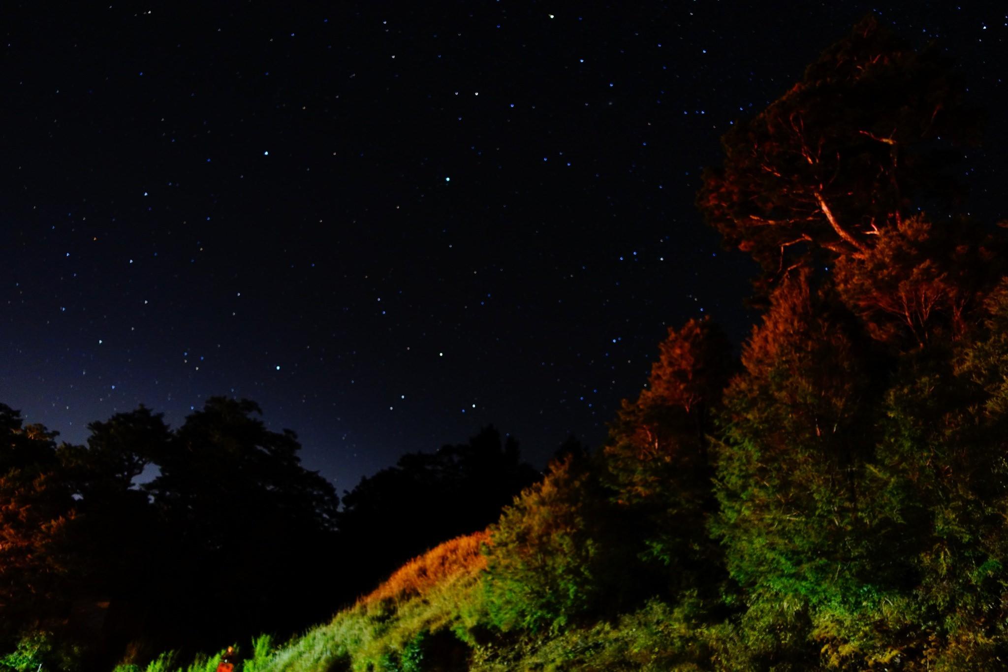 星星在夜空中閃閃動人