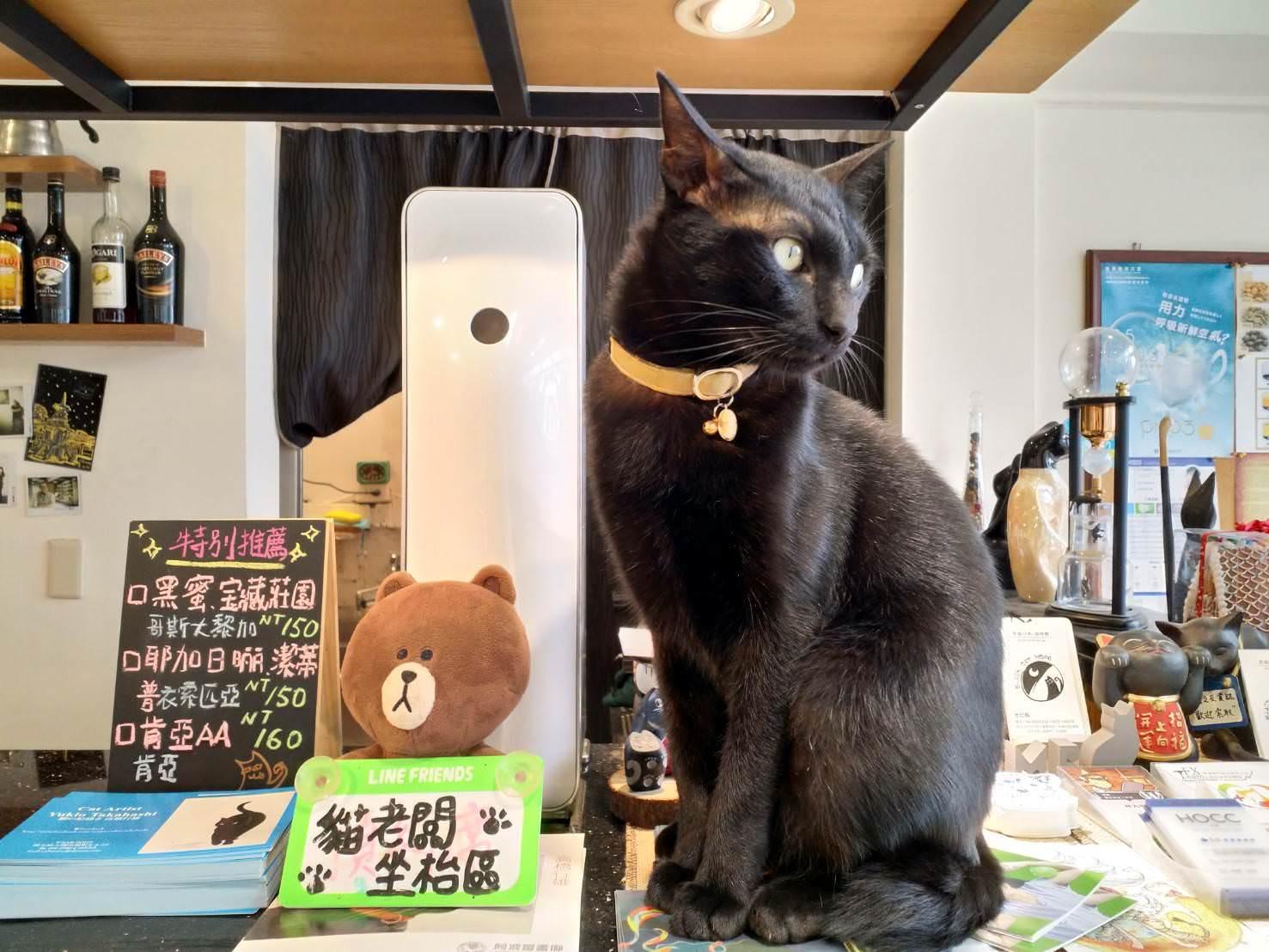 黑貓咖啡館的鎮店之寶-烏吉